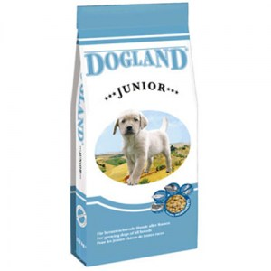 Dogland_Junior